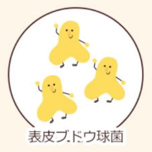 ハダキララの善玉菌